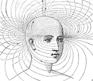 human brain meditation