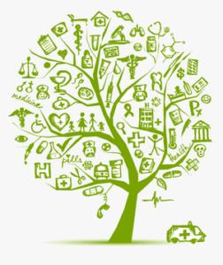 tree health visualization